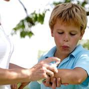 «La résistance aux insecticides apparaît chez les vecteurs de maladies»