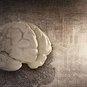 L'imagerie du cerveau pour prévoir des comportements