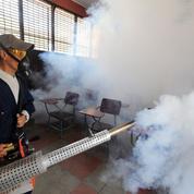 L'OMS sonne l'alarme contre le virus Zika