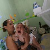 Zika: l'Institut Pasteur quantifie le risque de microcéphalie