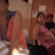 Martinique : «Aucune anomalie fœtale liée au Zika n'a été détectée»