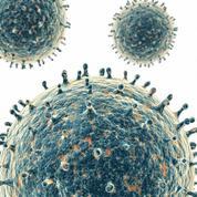 Surveillance de la grippe: le réseau des Grog ferme ses portes