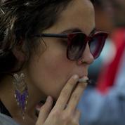 Alcool, cannabis: les jeunes sont plus sensibles aux addictions