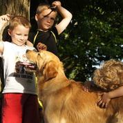 «J'ai élevé un futur chien guide»