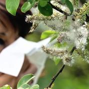 Les facteurs méconnus aggravant l'allergie respiratoire