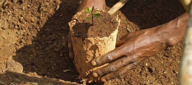 Site rencontre franco-malgache gratuit
