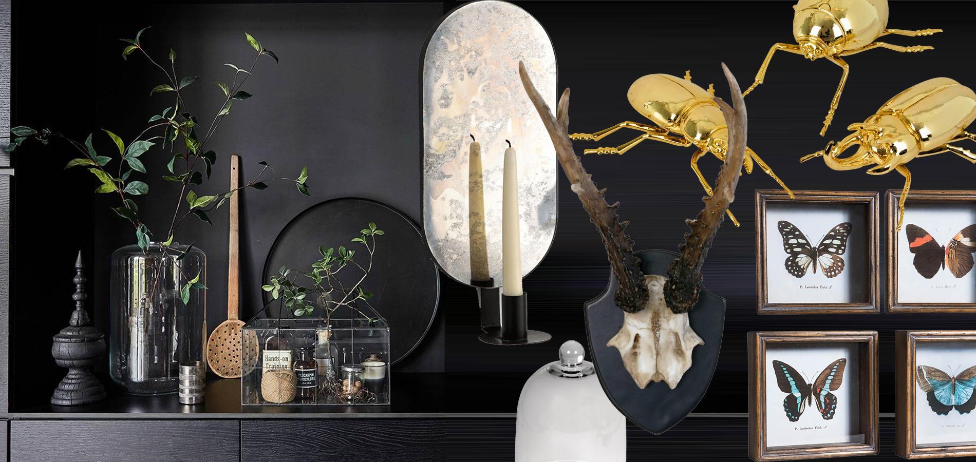 vingt objets d co pour un cabinet de curiosit s petit prix madame figaro. Black Bedroom Furniture Sets. Home Design Ideas