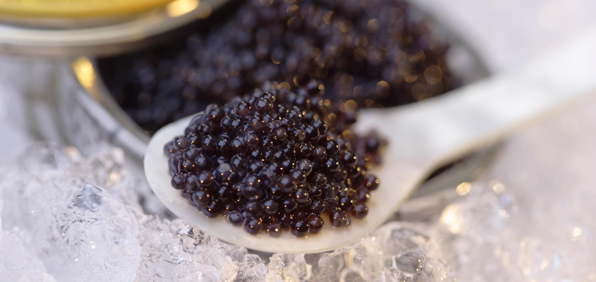 maison du caviar paris stunning caviar lyon caviar paris la maison du caviar comment manger du. Black Bedroom Furniture Sets. Home Design Ideas
