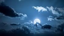 30 citations sur le royaume de la nuit