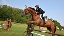 Cheval : 30 citations autour de l'équitation