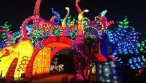 Des animaux fantastiques illuminent le Jardin des Plantes à Paris