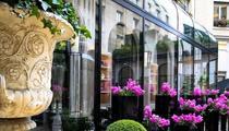 L' Orangerie de l'Hôtel George V