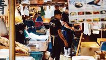 Kodawari Tsukiji