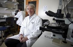 Les méfaits du bisphénolA prouvés in vitro
