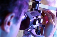 Il ne faut pas négliger la visite chez l'ophtalmologiste
