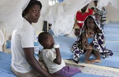 Paludisme: les inquiétantes résistances aux insecticides et aux médicaments
