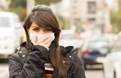 De nouvelles allergies naissent avec l'évolution de l'environnement