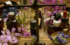 Se soigner par les plantes, une pratique délicate