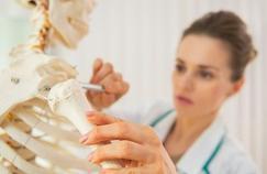 Les études de kinésithérapie réformées
