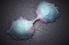 Cancer du côlon: peut-on déterminer le bon traitement par une prise de sang?