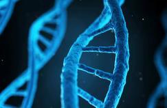 Faut-il autoriser les recherches sur l'embryon?