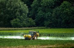Des pesticides retrouvés dans des maisons proches de cultures