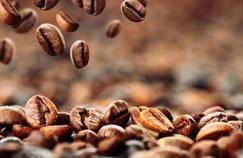 La caféine, une alliée à dose modérée