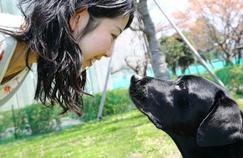 L'amitié entre le chien et l'homme, une affaire hormonale
