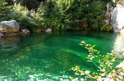 Épidémie de bilharziose en Corse