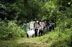 Les survivants d'Ebola victimes de douloureuses séquelles