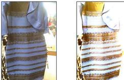 Pourquoi tout le monde ne voit pas cette robe de la même couleur ?