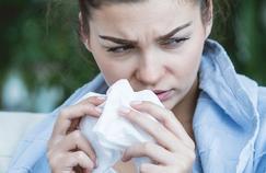 Allergiques aux pollens de bouleau, prenez garde !