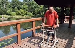 Un paralysé remarche après une greffe