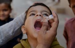 Polio: l'OMS décrète l'état l'urgence