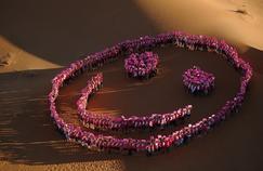 «Roses des Sables», un rallye féminin contre le cancer du sein