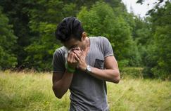 Les allergies aux pollens sont de retour
