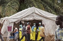 «L'émergence d'Ebola est un reflet de la dégradation des systèmes de santé»