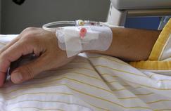 On peut produire de la morphine sans pavot