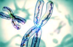 Guérie d'une maladie rare grâce à une mutation encore plus rare