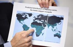 Où va le virus Zika ?