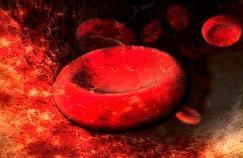 Un malade atteint d'anémie guéri par thérapie génique