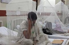 Le premier vaccin contre la dengue attendu pour 2015