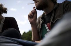 Cancer du testicule : le cannabis, facteur de risque