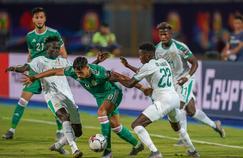 Sénégal-Algérie : une finale de la CAN à l'accent français