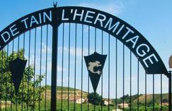 La Cave de Tain l'Hermitage, trésor de la Drôme