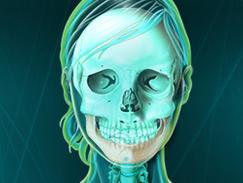 Maxillaire inférieur