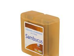 Boiron pate sambucus, boîte de 70 g