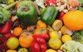 Le scandale du gaspillage alimentaire