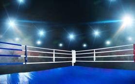 Championnat du monde WBA