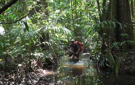 Amazonie, dans les pas de Maufrais